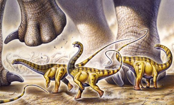 Speedy the Sauropod_OL72