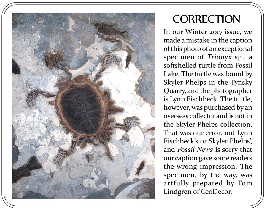 Trionyx correction
