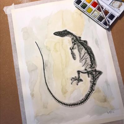 Supplementary 10 Lizard